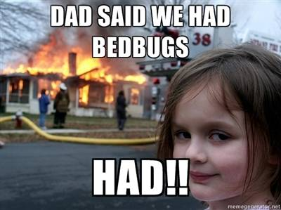 get rid bed bugs