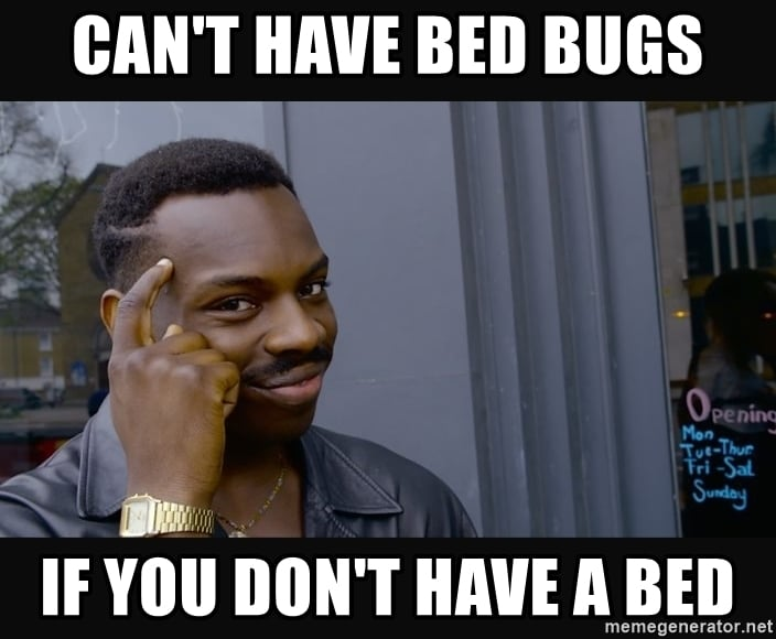 how car bed bug