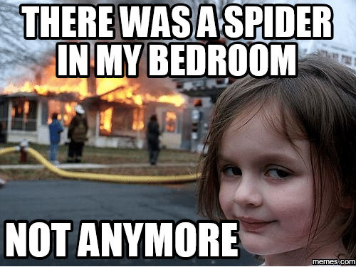keep spider away bed